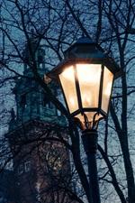 미리보기 iPhone 배경 화면 폴란드, 나무, 나뭇 가지, 램프, 밤