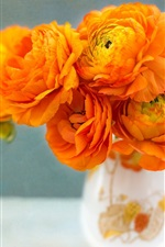 Preview iPhone wallpaper Ranunculus, orange flowers, vase