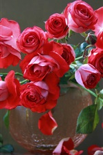 Preview iPhone wallpaper Red roses, bouquet, vase, cup