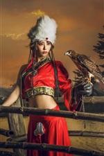 Red skirt girl, retro style, eagle, fence, sunset
