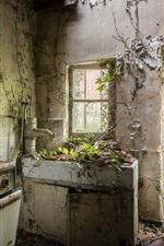 Preview iPhone wallpaper Ruins kitchen, furniture, door, plants growing
