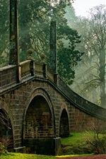 Preview iPhone wallpaper Scotland, Dumfries House, bridge, trees, sun rays