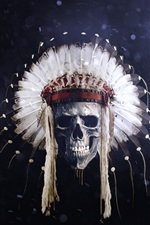Preview iPhone wallpaper Skull, Indian, feathers, creative picture