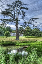 Preview iPhone wallpaper Spring, trees, pond, house, HDR style