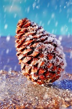 Preview iPhone wallpaper Spruce fruit, snowy