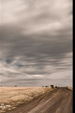 Preview iPhone wallpaper Tree, road, clouds, fields