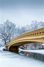 Preview iPhone wallpaper USA, New York, Central Park, winter, snow, bridge