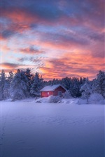 Preview iPhone wallpaper Winter, forest, house, snow, clouds, dusk