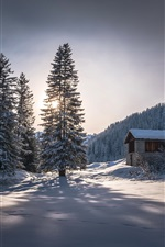 Preview iPhone wallpaper Winter, hut, trees, thick snow, cold