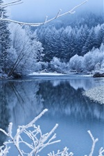 Preview iPhone wallpaper Winter, snow, trees, river