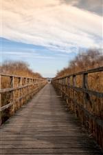 Preview iPhone wallpaper Wood bridge, reeds