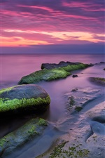 Красивый морской пейзаж, закат, камни, мох, сумерки