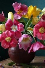 iPhone обои Красивые цветы тюльпанов, ваза, красочные