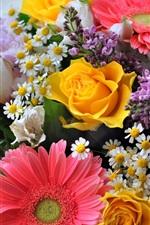 Preview iPhone wallpaper Chamomile, chrysanthemum, gerbera, roses