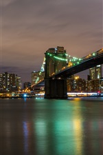 City night, river, bridge, skyscrapers, lights