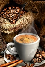 Coffee beans, one cup coffee, cinnamon, star anise, nuts, bags