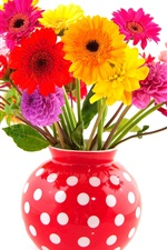 Preview iPhone wallpaper Colorful flowers, gerbera and dahlias, red vase, white background