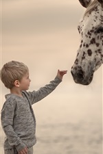 Preview iPhone wallpaper Cute little boy and horse