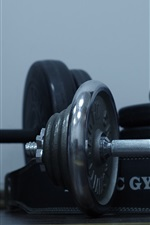 Dumbbells, gym