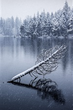 Preview iPhone wallpaper Jura, Switzerland, lake, snow, trees, winter