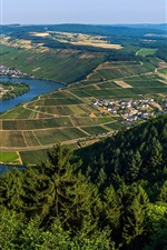 Moselle, Germany, France, river, fields, trees, green