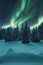 Preview iPhone wallpaper Northern lights, forest, trees, winter, snow, night