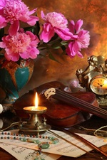 Preview iPhone wallpaper Peonies, candle, flame, violin, music score