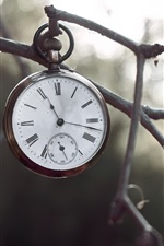 Preview iPhone wallpaper Pocket watch, twigs