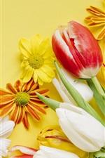 iPhone fondos de pantalla Flores rojas, amarillas, blancas, tulipanes, margarita