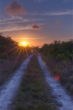 Preview iPhone wallpaper Road, grass, sunset