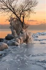 Sea, coast, thick ice, winter