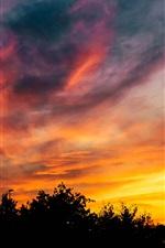 Sunset, sky, trees, darkness