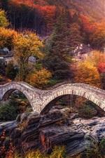 Switzerland, Alps, bridge, river, trees, autumn