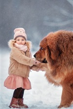 Preview iPhone wallpaper Tibetan Mastiff, dog, child girl, snow, winter