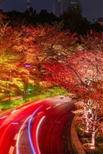 Preview iPhone wallpaper Tokyo, Japan, roads, trees, night, lights