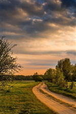 Preview iPhone wallpaper Trees, fields, road, countryside
