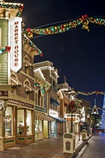 Preview iPhone wallpaper USA, Anaheim, California, Disneyland, street, houses, night