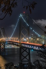 Preview iPhone wallpaper USA, San Francisco, California, Bay Bridge, night, illumination