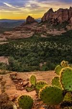 Preview iPhone wallpaper USA, Sedona, mountains, rocks, cactus