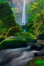 Preview iPhone wallpaper Waterfall, moss, green, bushes, stones, people, USA