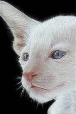 Preview iPhone wallpaper White kitten, blue eyes, black background