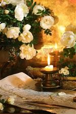 iPhone fondos de pantalla Rosas blancas, florero, vela, llama, pluma