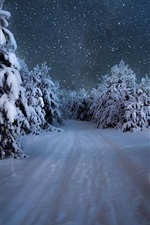 Preview iPhone wallpaper Winter, trees, thick snow, snowy