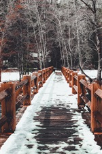 Preview iPhone wallpaper Wood bridge, snow, trees, winter