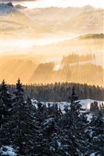 Preview iPhone wallpaper Alps, sun rays, mountains, morning, trees, snow, winter