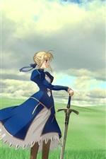 Preview iPhone wallpaper Anime girl, blue skirt, sword, grass