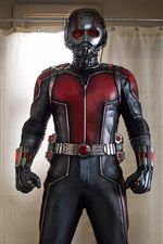 Preview iPhone wallpaper Ant-Man in bathroom