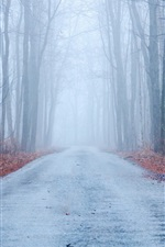 Preview iPhone wallpaper Autumn, fog, road, trees, forest