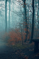 Preview iPhone wallpaper Autumn, trees, fog, bench, path, park
