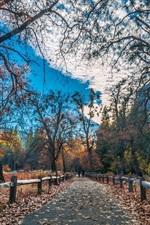 Belo parque, vedação, árvores, montanhas, outono